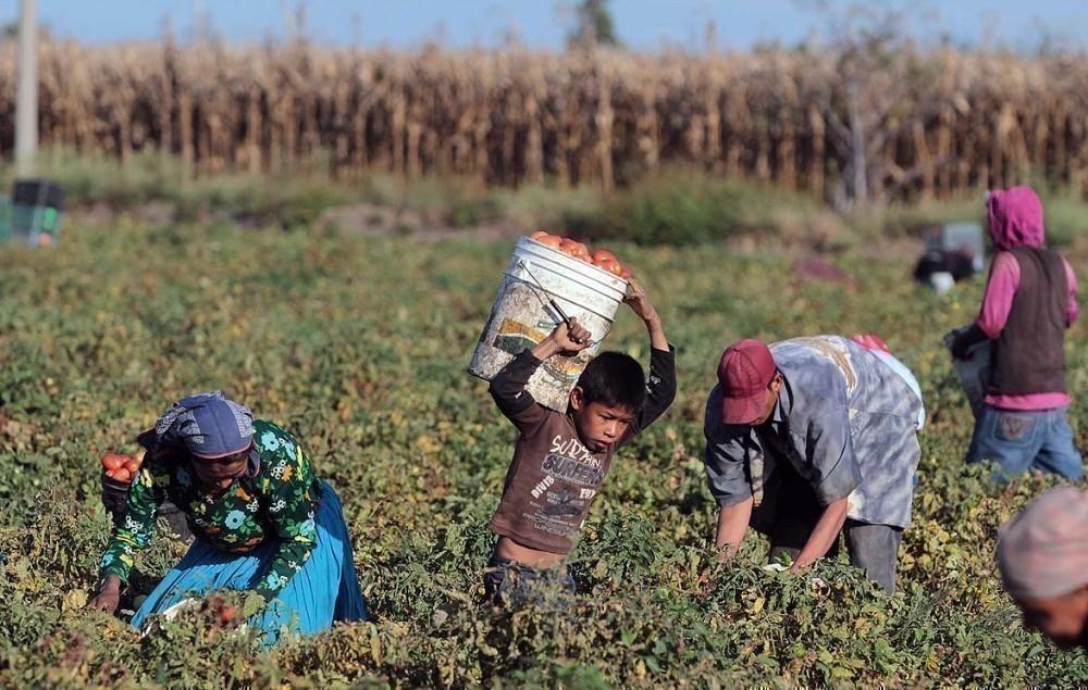 día mundial contra el trabajo infantil- estadísticas