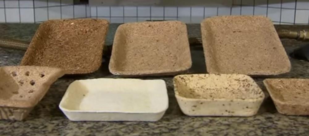 bandejas biodegradables - sayuri magnabosco y sus bandejas