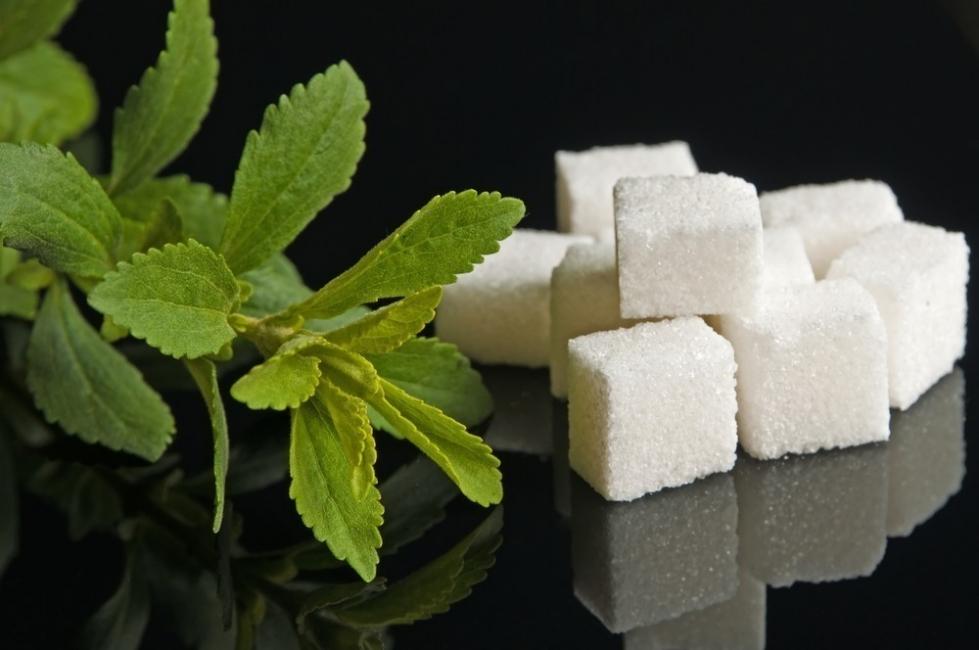 formas de conservar tus hierbas- con azúcar