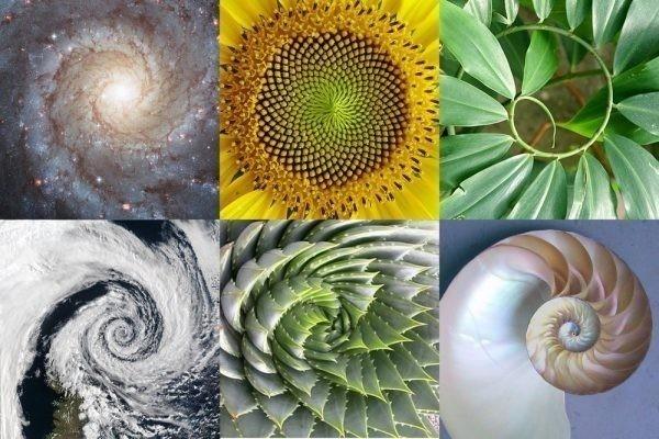 geometría sagrada y nicola tesla