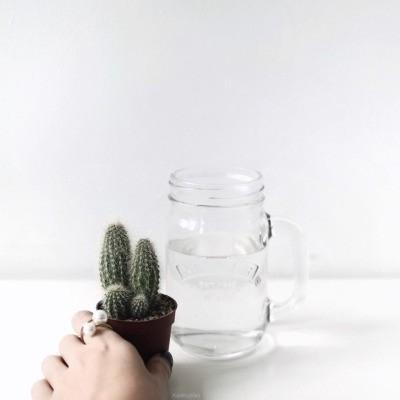 minimalismo piensa antes de actuar