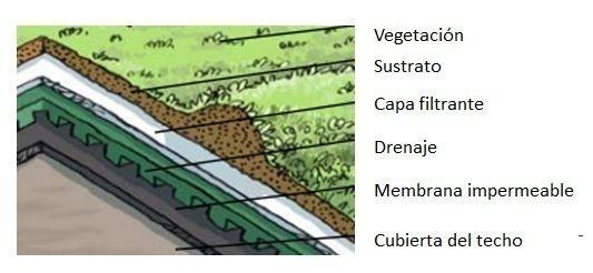 techo verde capas
