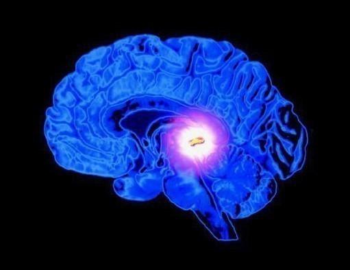 Qué es y cómo activar la glándula pineal