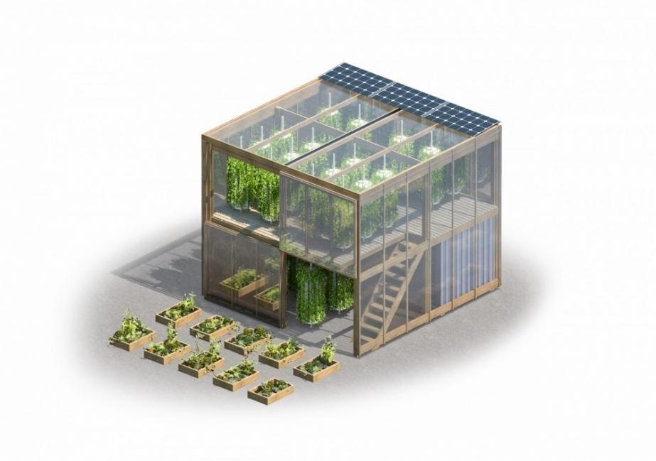 granja urbana que puede producir hasta 6 toneladas de alimento - soberanía alimentaria