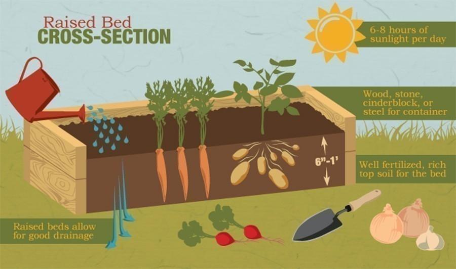 construcción de bancales elevados de jardinería- cuidados y consejos
