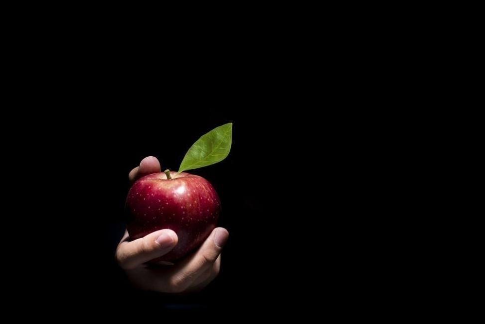 test de frutas manzana