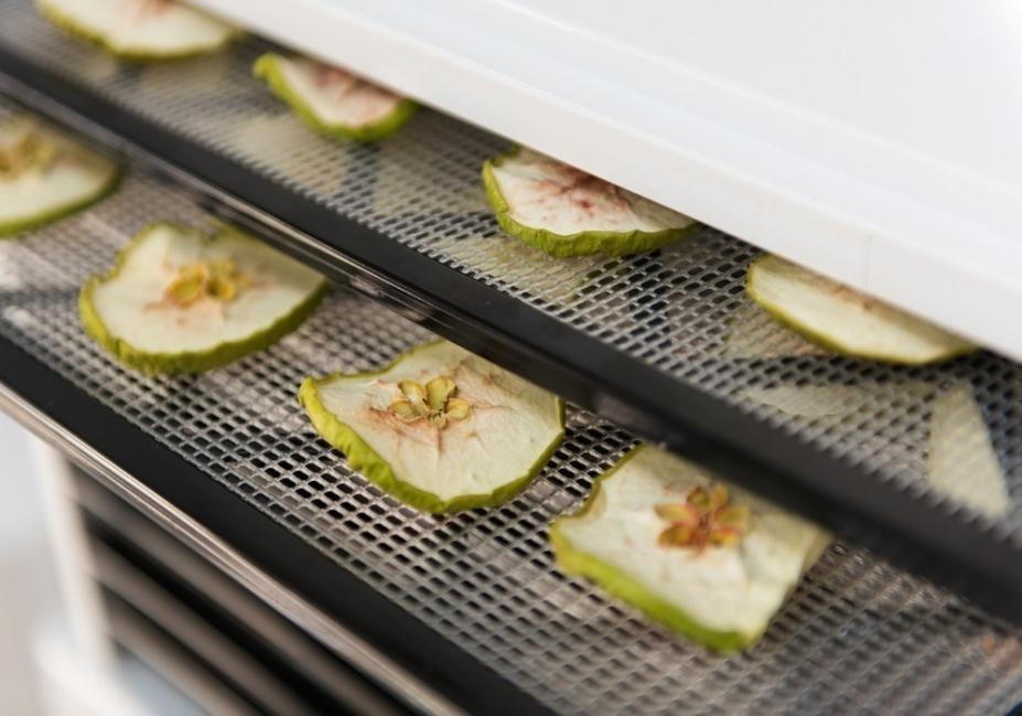 deshidratador solar casero de alimentos- proceso de deshidratación