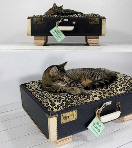 cama-vintage-para-gatos-2