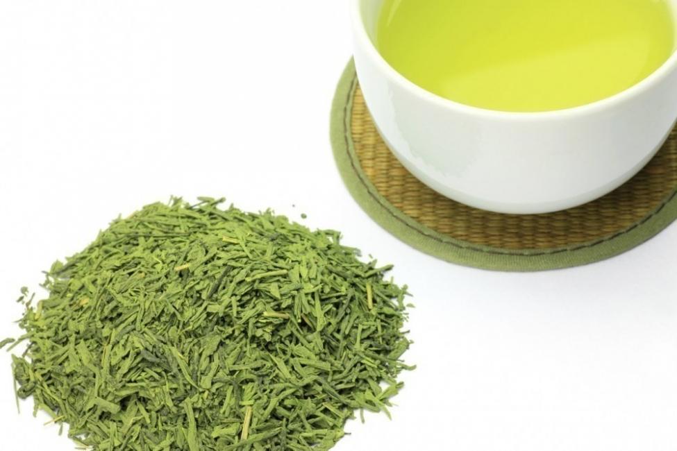 plantas para bajar de peso - té verde