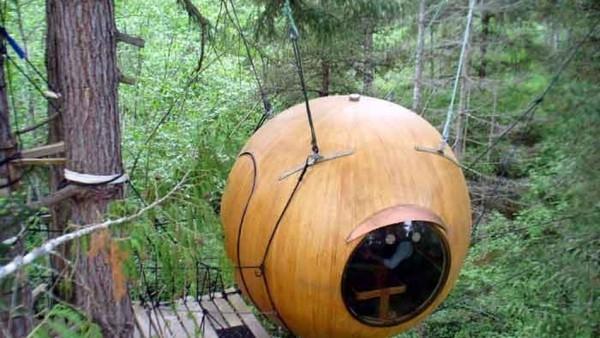 arbol-llama-Eve-encuentra-Canada_TINIMA20121116_0333_3