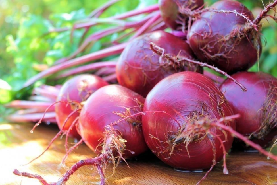 alimentos que alcalinizan nuestra sangre- remolacha