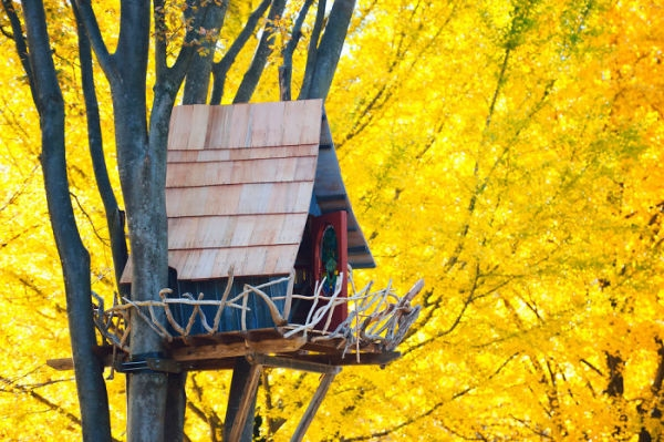 20-Most-Beautiful-Treehouses-from-All-Over-the-World-17