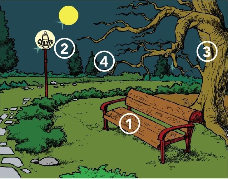 Test del parque