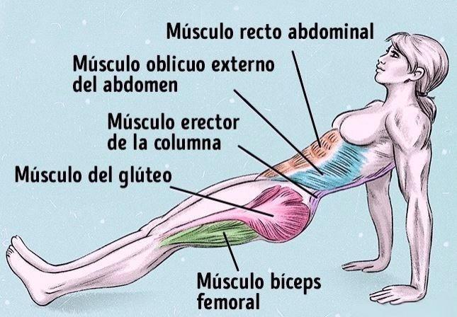 El mejor ejercicio para quemar grasa del abdomen