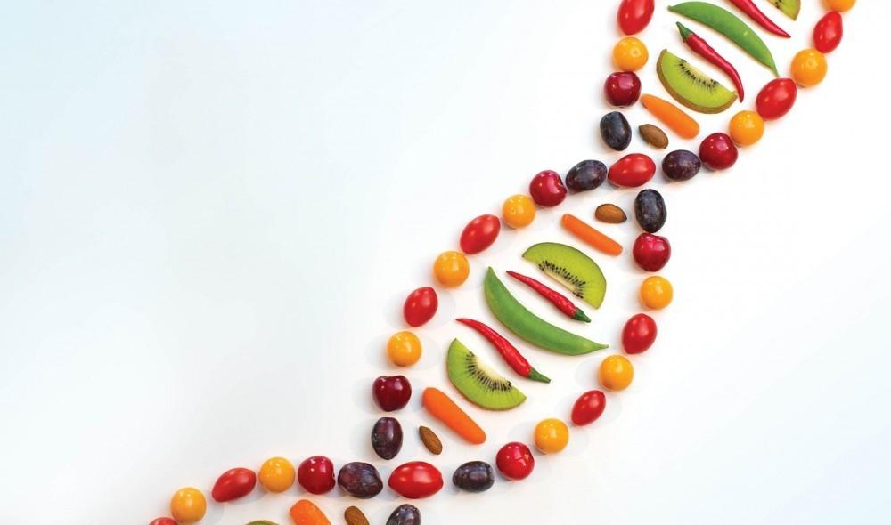 Una dieta basada en plantas podría reducir significativamente el riesgo de enfermedades crónicas importantes