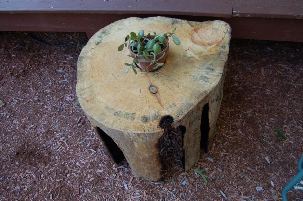 Transformar un tronco en una cocina de exterior - alternativa