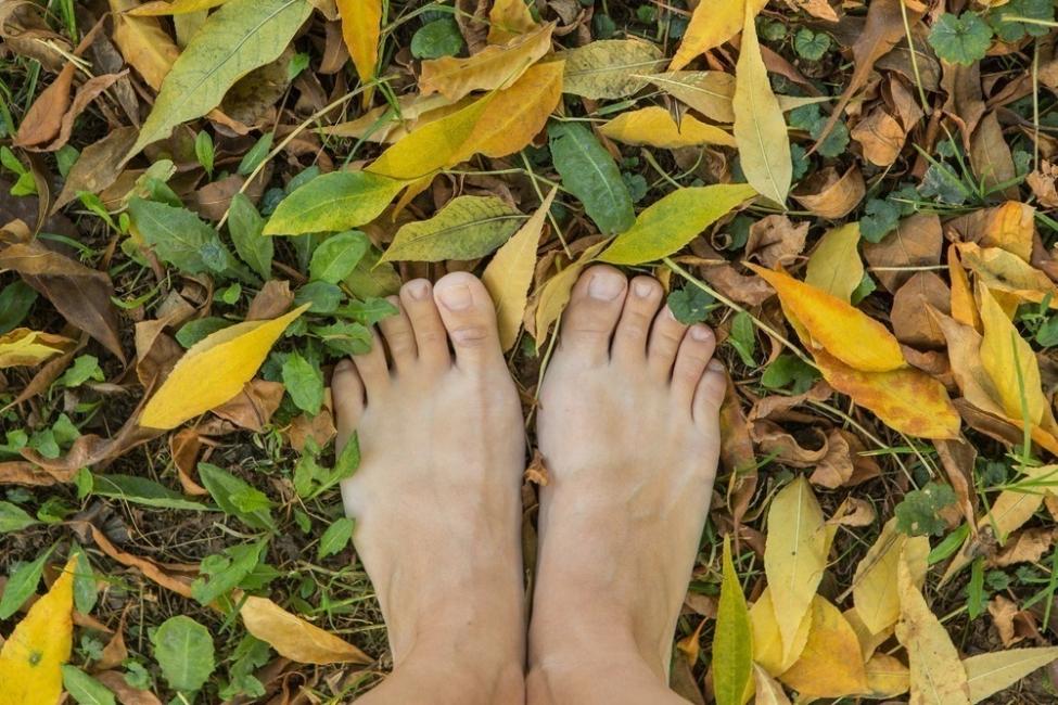 ejercicio pies