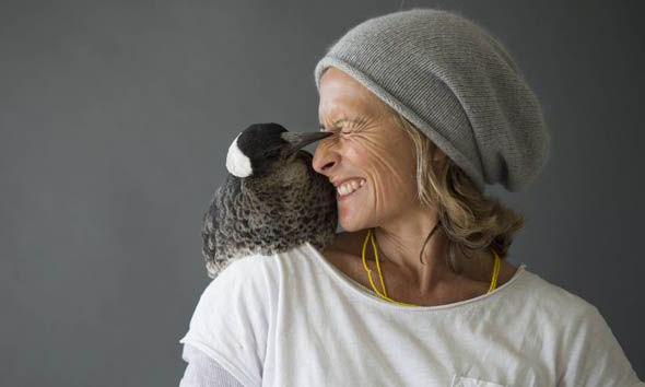 penguin-magpie-sam-bloom-australia-instagram-266863