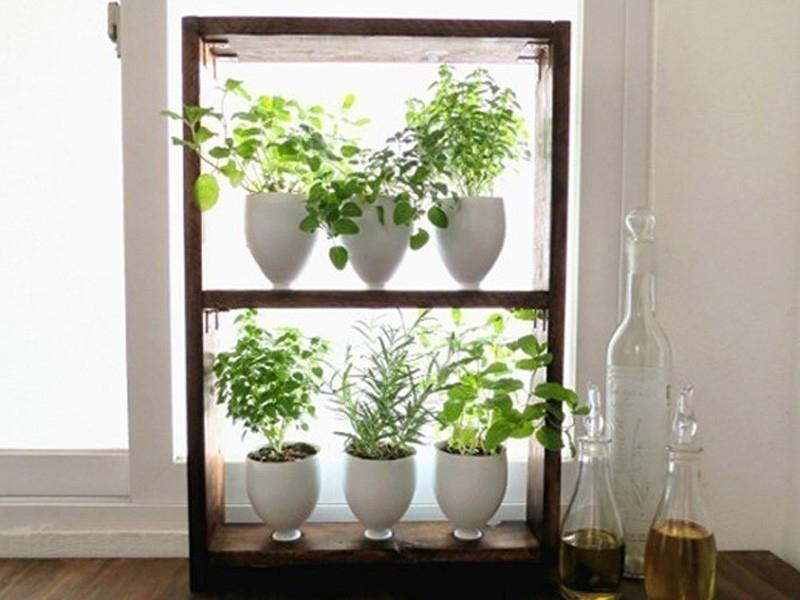 hacer un pequeño jardín aromático vertical-