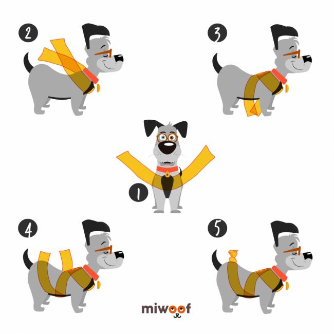 método pirotecnia mascotas