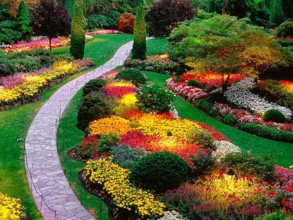 jardinesterapeuticos2