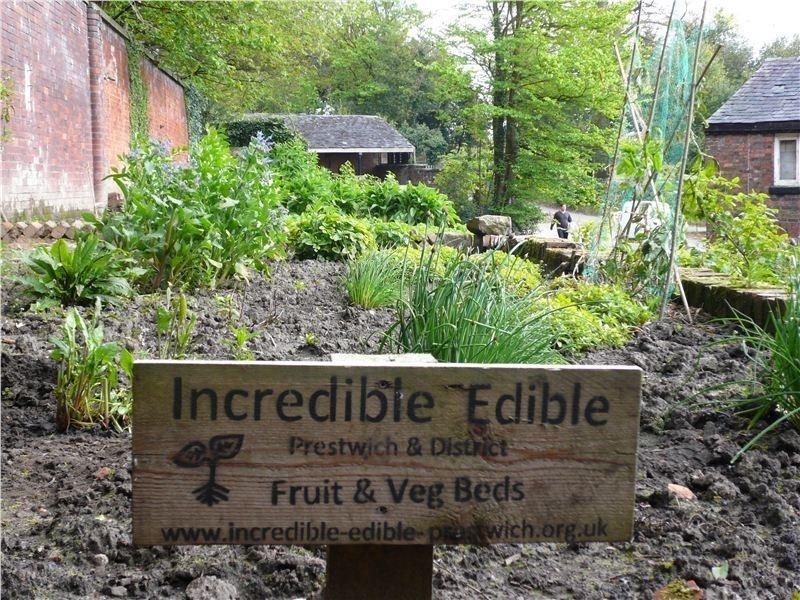 pueblo comestible - frutas y vegetales