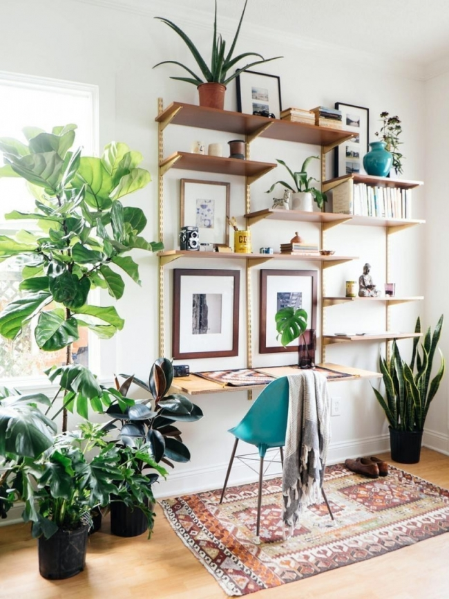 ideas para decorar con plantas - escritorio