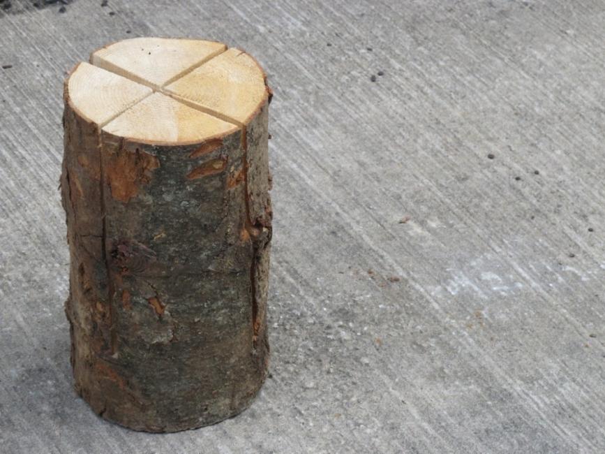 Transformar un tronco en una cocina de exterior - tronco cortado